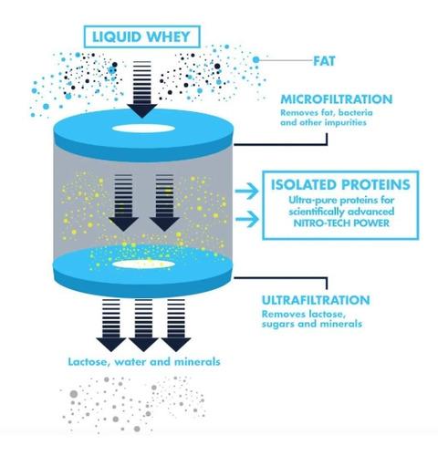 nitrotech power 4lb - muscletech + envío gratis
