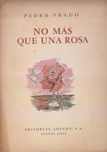 no mas que una rosa - pedro prado