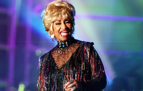 novela celia cruz en digital