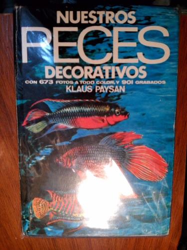 nuestros peces decorativos