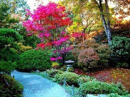 nuevo! libro jardineria diseño de parques y jardines! er