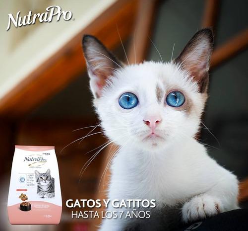 nutrapro gatos y gatitos 7.5kg ,entrega gratuita quito