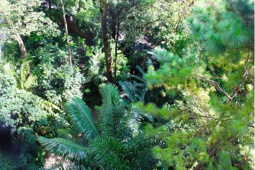 o verde integra a paisagem! - 3-im26624