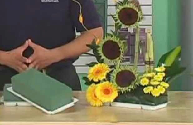 Oasis Para Manualidades Arreglos Florales Centro De Mesa