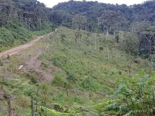ocasión venta de propiedad 20 hectáreas