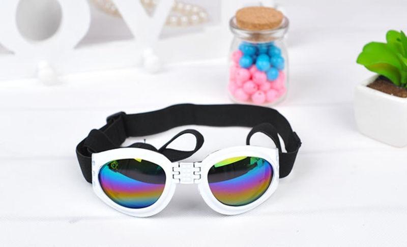 f71f9bf2c0995 óculos de sol c  proteção uv p  cães cachorro protege olhos. Carregando  zoom.