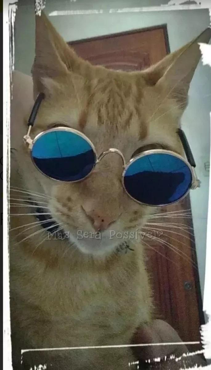 ba2fff2893599 Óculos De Sol Pet - Gatos E Cachorros Pequenos - Roupa Pet - R  25 ...