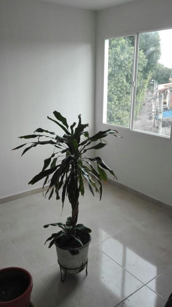 oferta apartamento