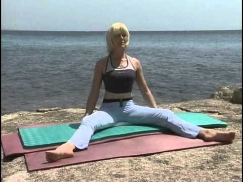 oferta- dvd metodo pilates en casa- modela tu cuerpo -