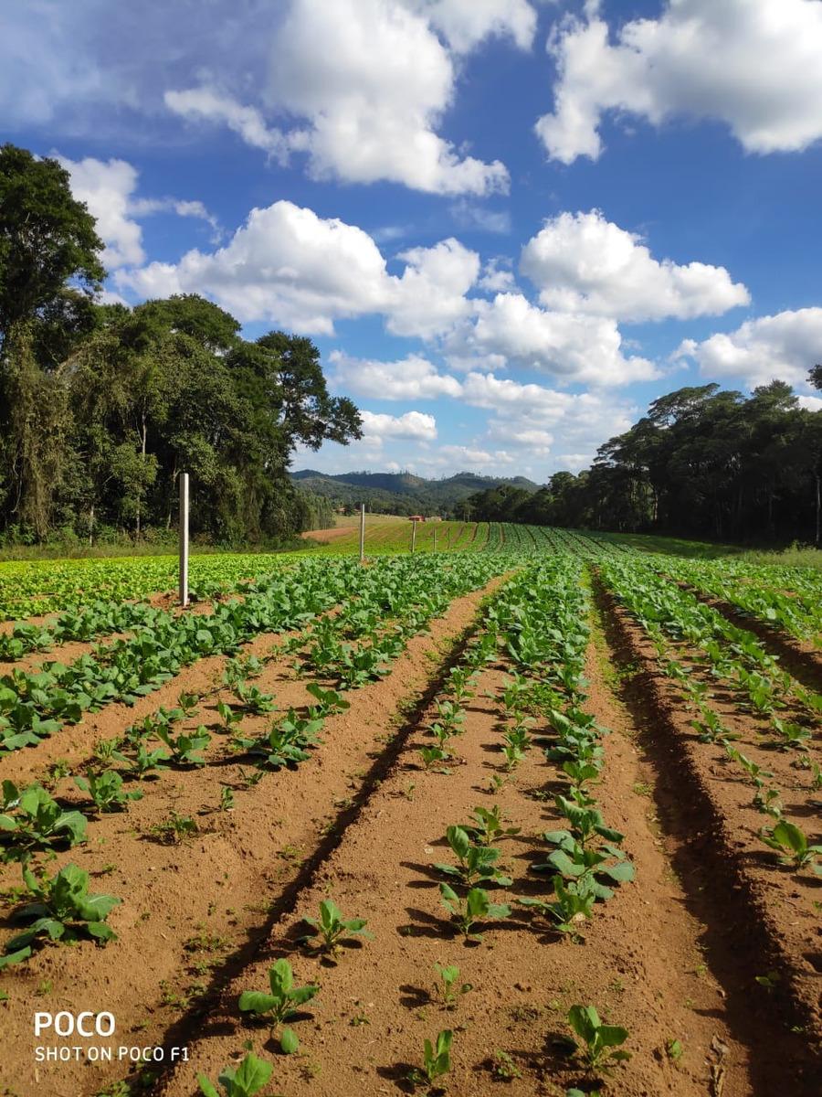 oferta especial terrenos 600 m2 100% plano por 22 mil tl