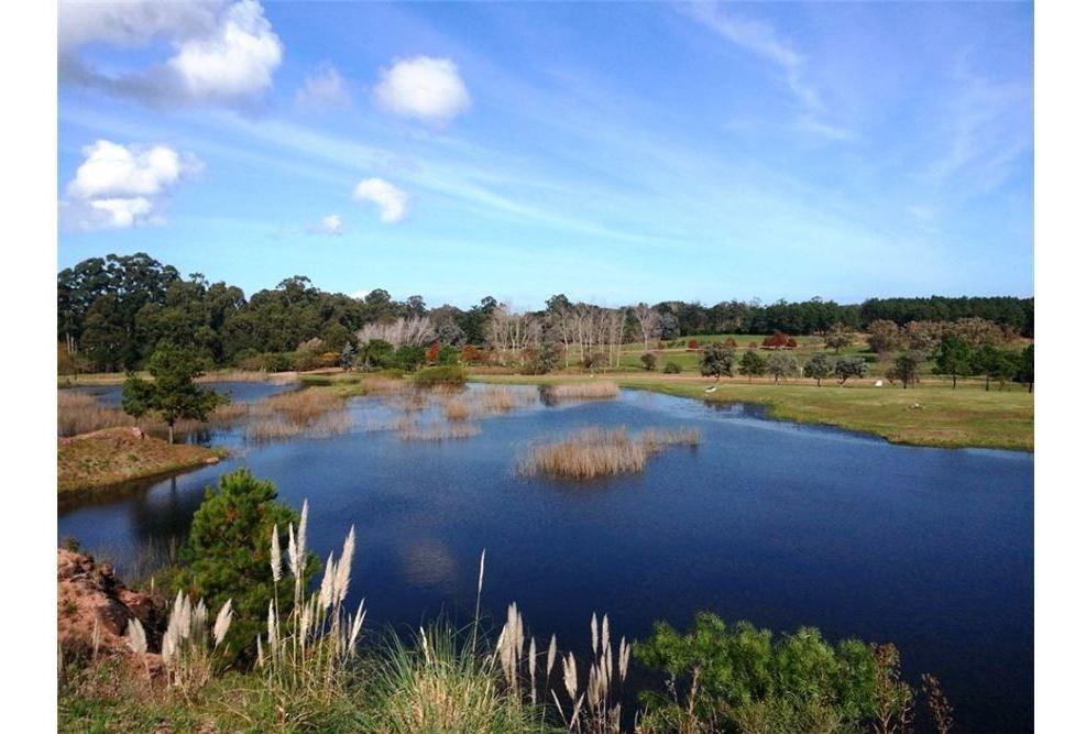 oferta terreno 1.000 m² - listo para construir