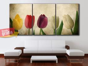 Oferta Triptico Flores Cuadros Decorativos 64x30cms Fw07