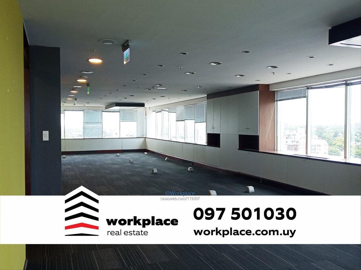 oficina alquiler world trade center -wtc- buceo