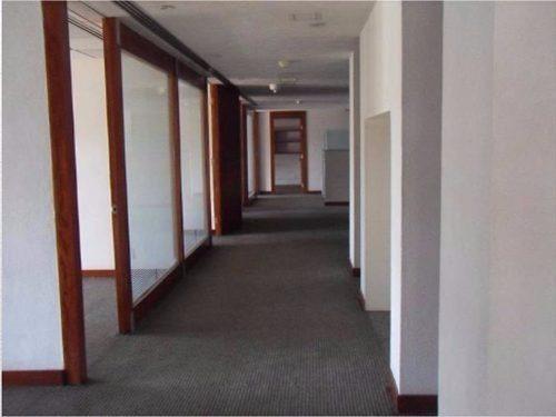 oficina en renta 1,500 m2, lomas de chapultepec