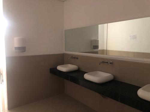 oficina en renta 439 m2 plaza nayandei av bonampak