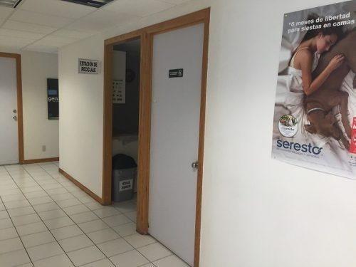 oficina en renta avenida la paz colonia americana