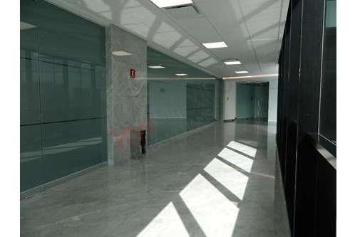 oficina en renta en desarrollo the point santa fe desde 12,047 hasta 12,868 usd