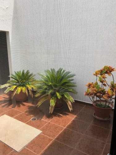 oficina en venta en colonia jardin