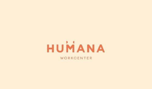 oficina humana playa del carmen nuevo concepto único negocio