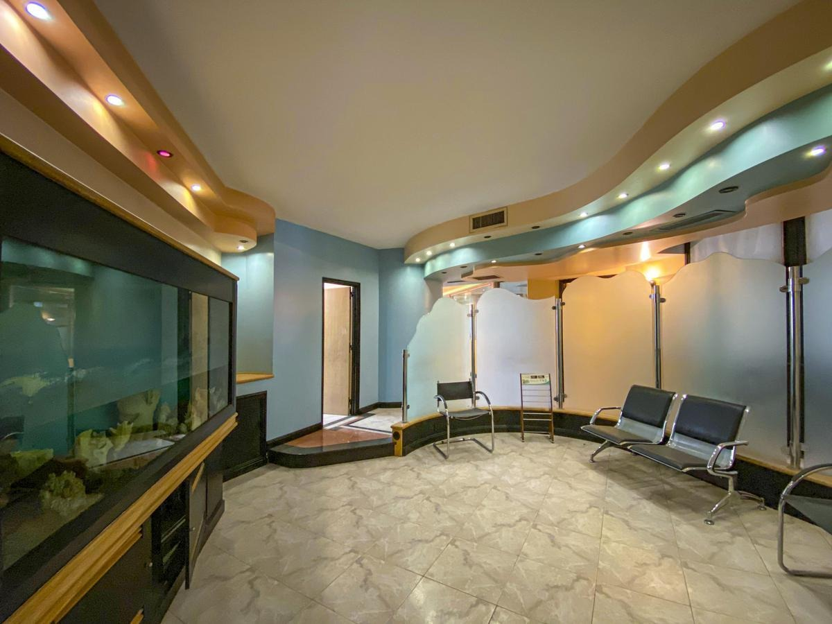 oficina   palacio minetti   gigante