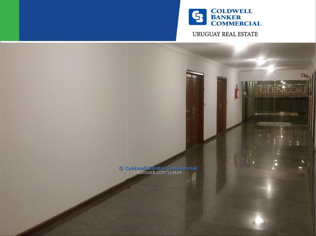 oficina plaza independencia / ciudad vieja - alquiler