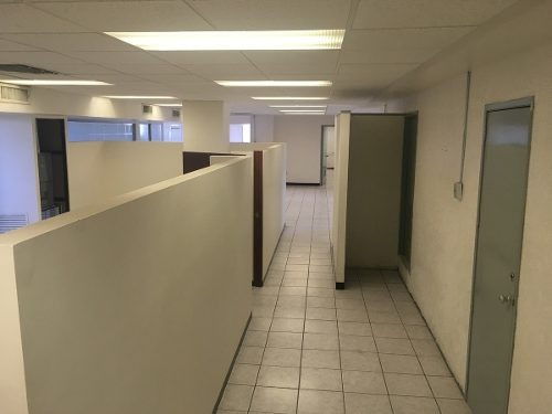oficina renta av. cuauhtemoc ernlop gl11