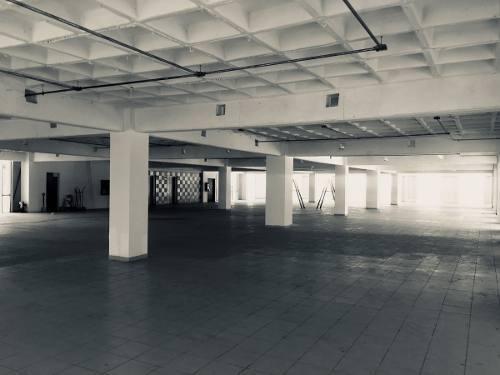 oficina renta  metro toreo 600 m2