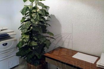 oficinas en renta en condesa, cuauhtmoc