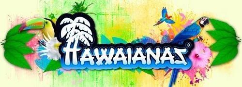 ojotas hawaianas slim pulsera lisa dama mujer casa andrea