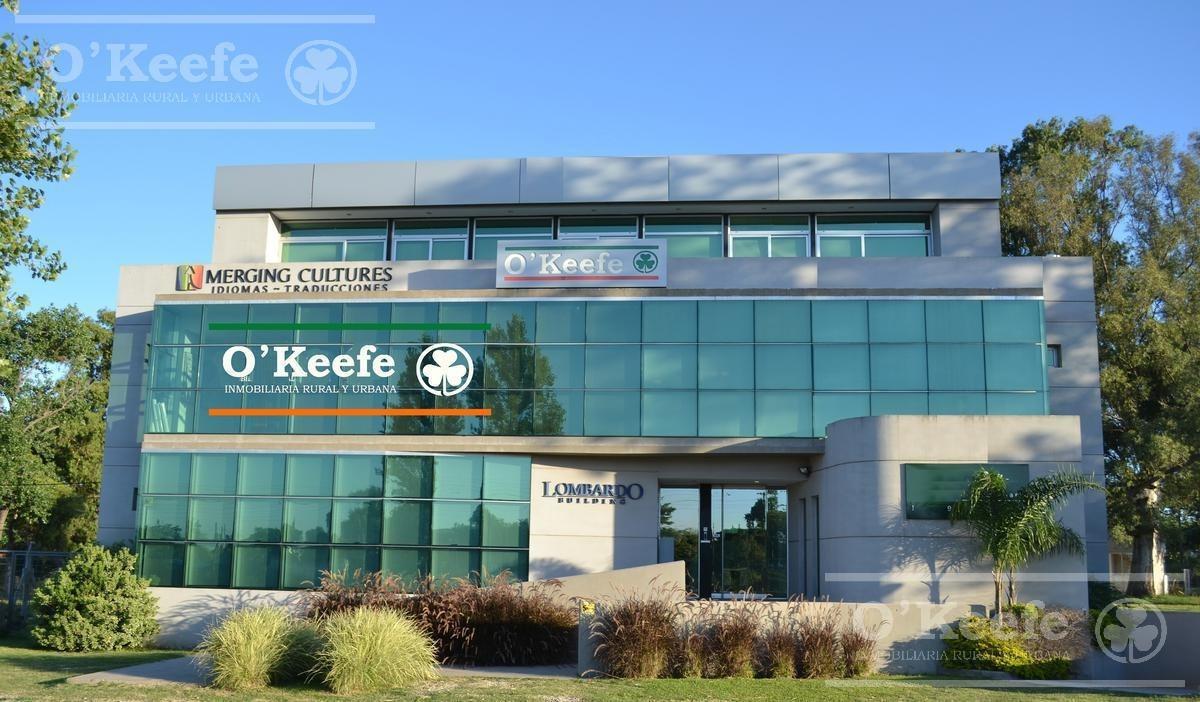 o'keefe: lote en venta en san juan chico con fondo verde en guillermo hudson