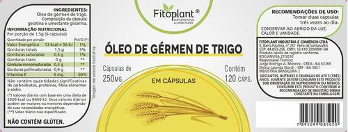 óleo de germe de trigo 250mg caixa c/ 3 potes premiun origin