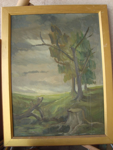 oleo firmado lilia bracco paisaje cuadro original 77x60 cm