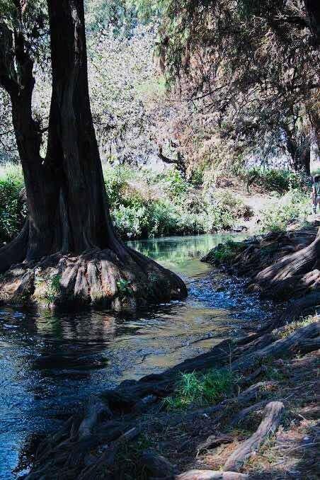 oportunidad 2000 m2 excelente ubicación bardeado arroyo agua