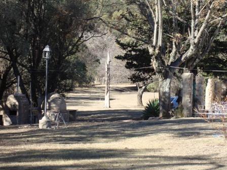 oportunidad! 7 hectareas en las jarillas,plantación de nogal