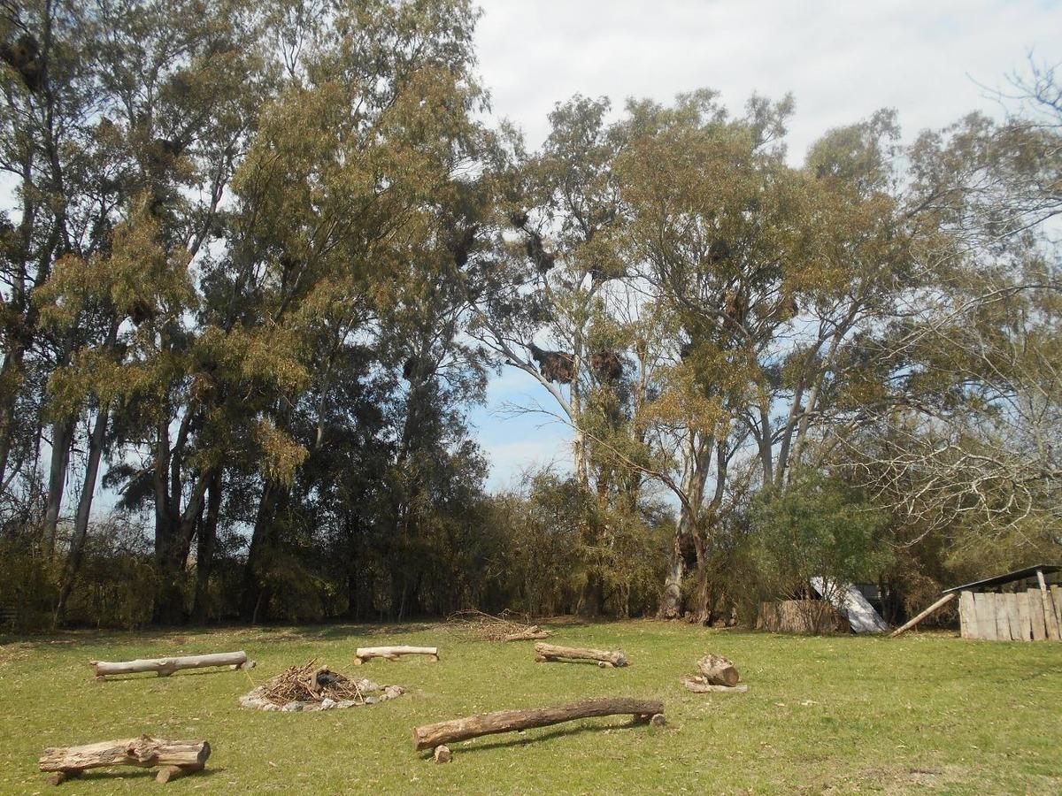 oportunidad alquiler de predio para camping-ramallo