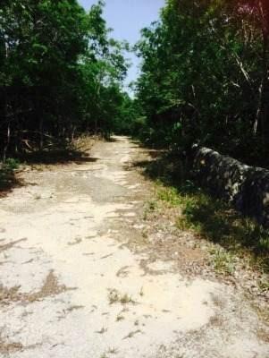 oportunidad para inversionistas, terreno sobre carretera a merida p1366