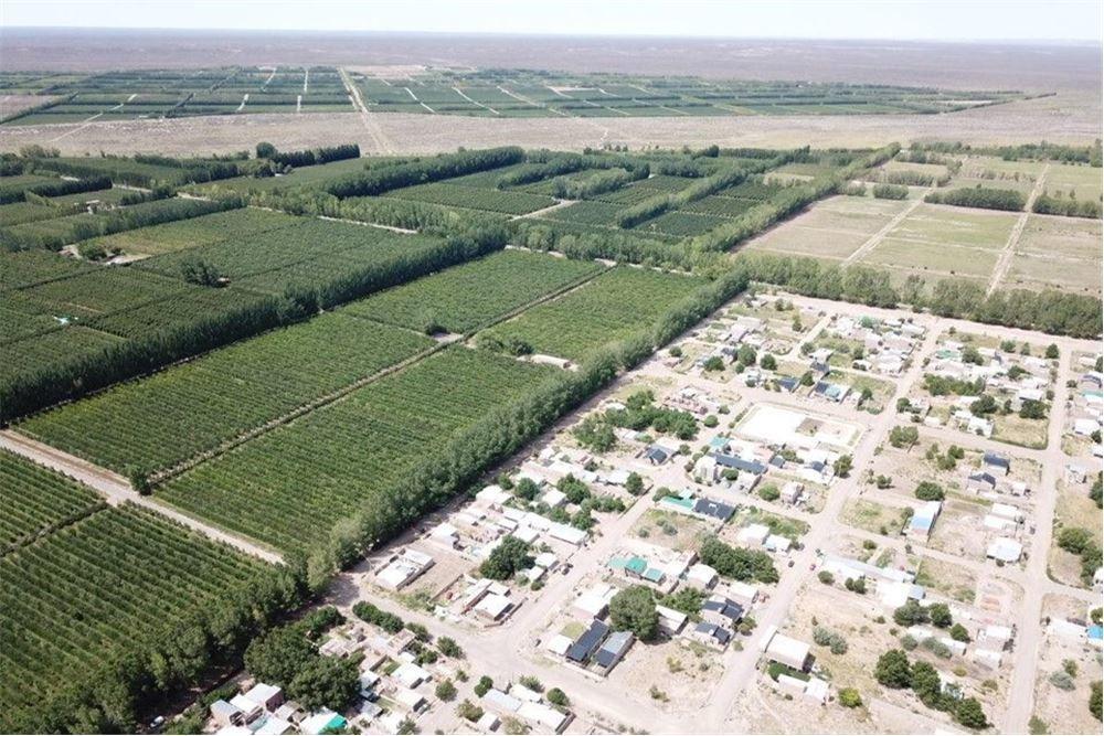 oportunidad san patricio del chañar 6,5 hectareas