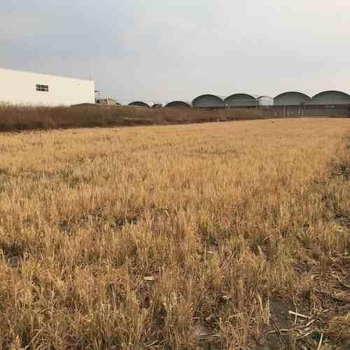 oportunidad! terreno industrial en venta en chalco