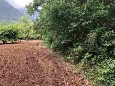 oportunidad terreno plano en los cavazos col. privada