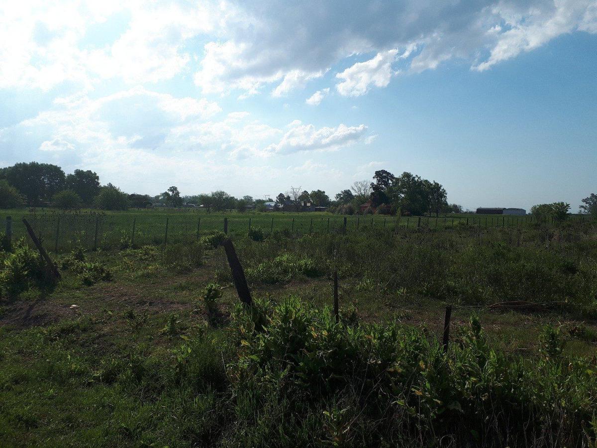 oportunidad vendo tres hectareas en ibarlucea
