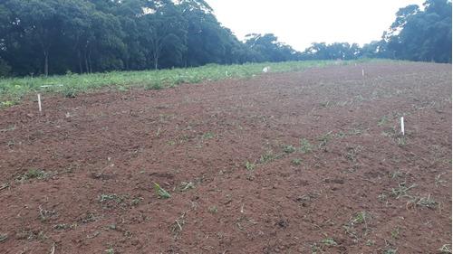 oportunidade de investimento terrenos para chácara 33 mil j