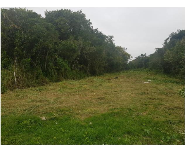 oportunidade! lotes de terreno em itanhaém litoral sul de sp