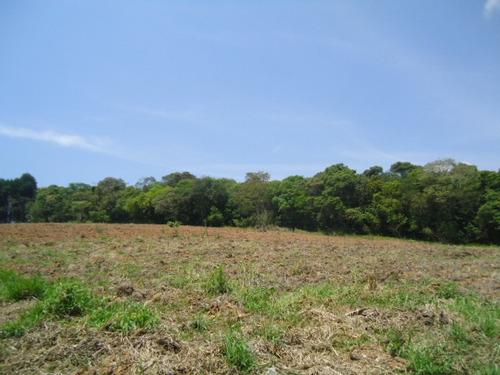 oportunidade sitio 41.000 mts ibiúna casa, lago área plantar