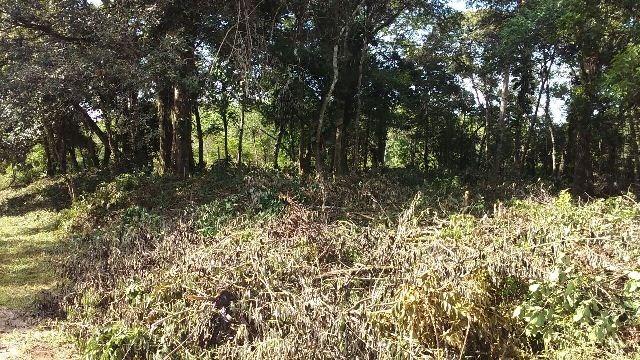 oportunidade! terreno no litoral paulista