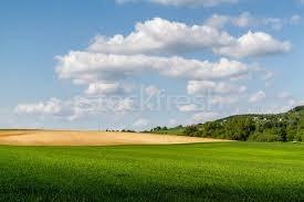 oportunidade terrenos 500 m² apenas 15 mil a vista!! gustavo