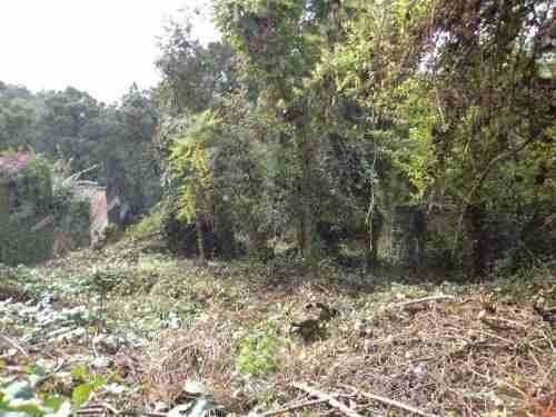 oportunidad,terreno en colonia del bosque