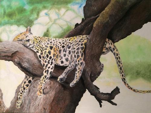 original óleo sobre tela  leopardo durmiendo  80 x 60