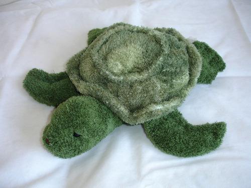 original y tierna tortuga