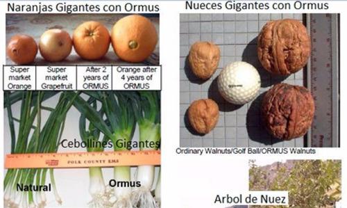 ormus producto naturista de mayoreo 3 litros envío gratis