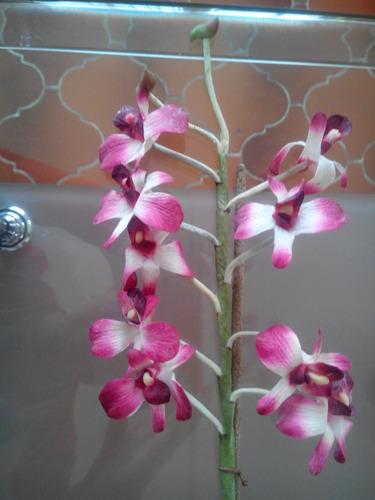 orquídea artificial en maceta